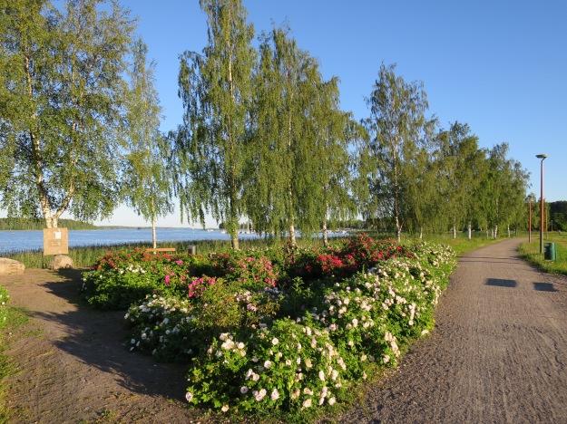 Laivasilta Harbor Park, Loviisa