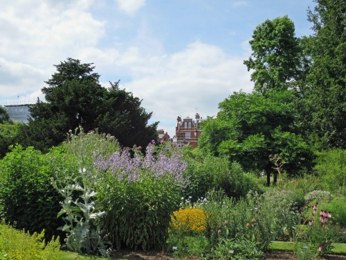 View from the Chelsea Physic Garden