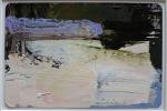 Skater's Surface, Rebecca Allan